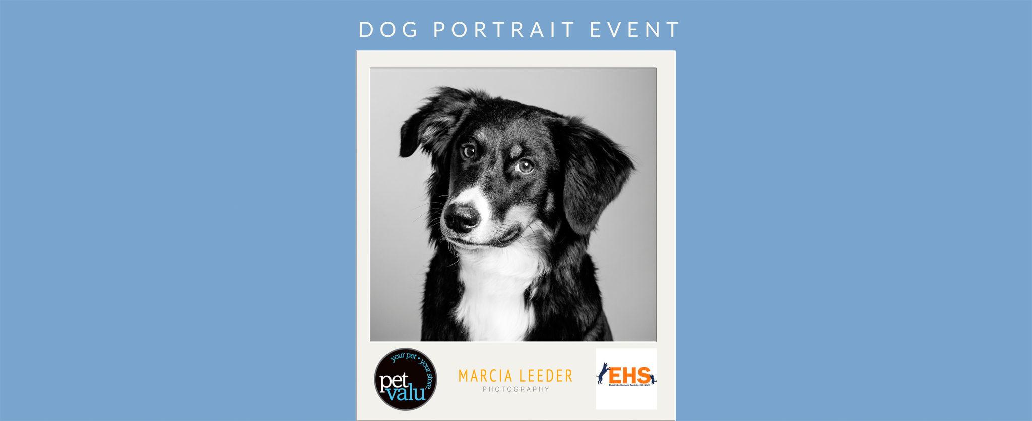 <a href='http://marcialeeder.com/2017/09/06/pet-valu-humber-bay-portrait-event/'></a>